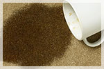 Carpet Cleaning A1 Carpet Care